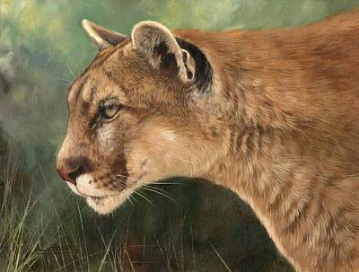 Puma Painting - Mountain Lion by David Stribbling
