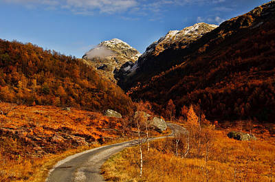 Sun Photograph - Mountain Road by Gry Thunes