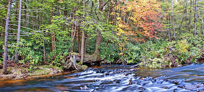 Print featuring the photograph Mountain Stream In Autumn Pocono Mountains Pennsylvania by A Gurmankin