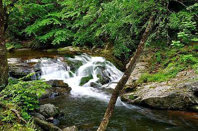 Mountain Stream Print by Todd Hostetter