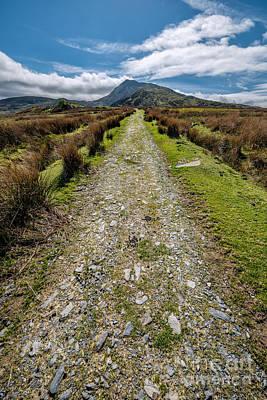 Walkway Digital Art - Mountain Track by Adrian Evans