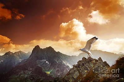 Autumn Photograph - Mountains Sunset Landscape by Michal Bednarek
