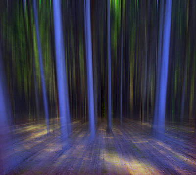 Moving Forest Print by Florin Birjoveanu