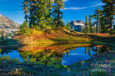 Mt Baker Tarn In Fall Print by Inge Johnsson