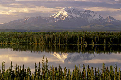 Mt Drum Over Willow Lake Wrangell-st Print by Calvin Hall