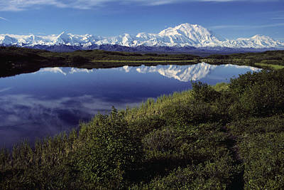 Northside Photograph - Mt Mckinley Reflected In Tundra Pond by Jeff Schultz