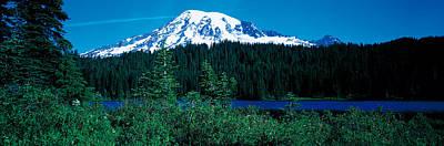 Mt Rainier National Park Photograph - Mt Rainier Mt Rainier National Park Wa by Panoramic Images
