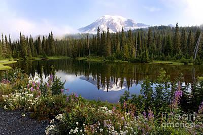 Mt. Rainier National Park Print by King Wu