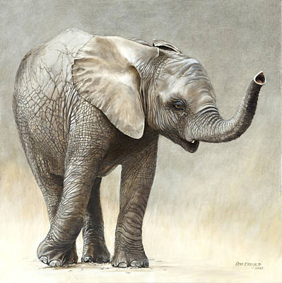 Endangered Wildlife Painting - Mtoto Tembo by Rob Dreyer AFC