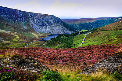 Multicolored Carpet Of Wicklow Hills. Ireland Print by Jenny Rainbow