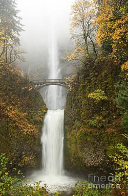 Waterfall Photograph - Multnomah Autumn Mist by Mike  Dawson