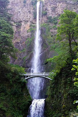 Photograph - Multnomah Falls by C Steele