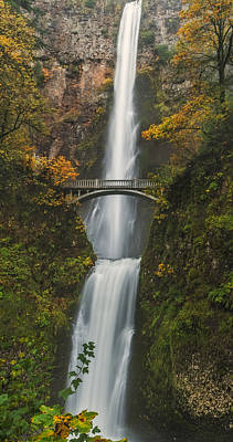 Waterfall Photograph - Multnomah Wearing Her Autum Colors by Loree Johnson