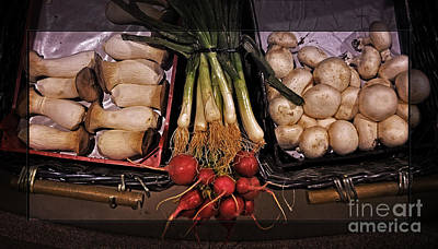Morel Photograph - Mushrooms And Radishes Framed by Mary Machare