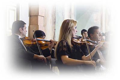 Violin Bows Violin Bows Photograph - Music To My Ears by Al Bourassa