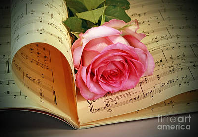 Musical Rose Print by Inspired Nature Photography Fine Art Photography
