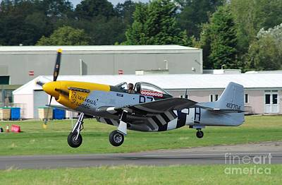 Ferocious Frankie Photograph - Mustang Fighter Landing by David Fowler