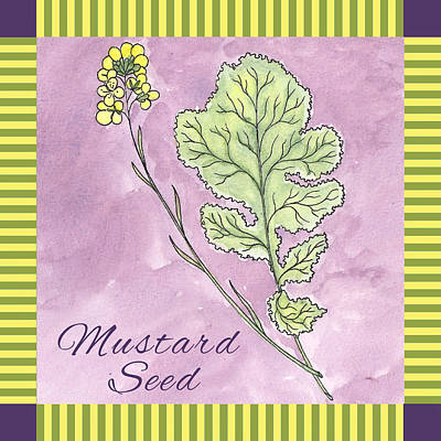 Stripe Drawing - Mustard Seed  by Christy Beckwith
