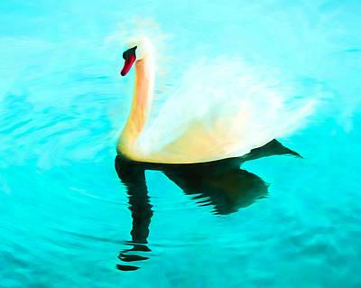 Swans Mixed Media - Mute Swan Art - Swimming In Turquoise  by Priya Ghose