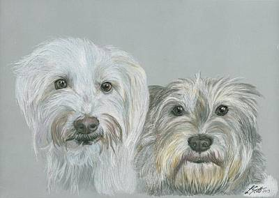 Animal Shelter Drawing - Mutts by Laurie Scott