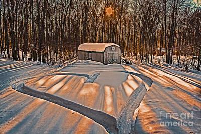 Old Barn Drawing Photograph - My Dog Trail Run 2 by Gary Keesler