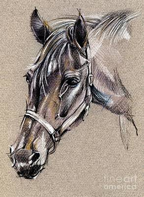 My Horse Portrait Drawing Print by Daliana Pacuraru