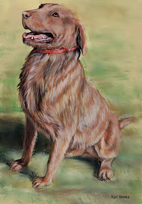 Retriever Digital Art - My Nephews Dog by Kay Sparks