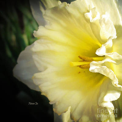 My Spring Love Print by Nava Thompson