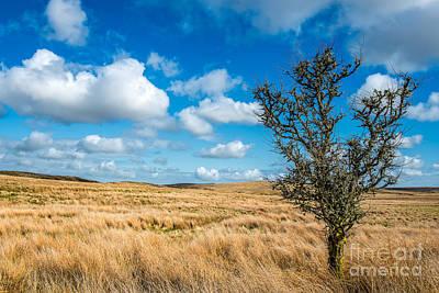 Clouds Photograph - Mynydd Hiraethog by Adrian Evans