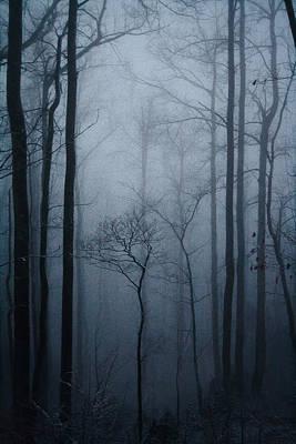 Mystic Snow Print by Mela Luna