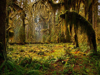 Mystical Forest Print by Leland D Howard