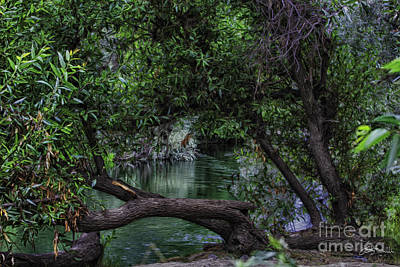 Mystical River Print by Jacque The Muse Photography