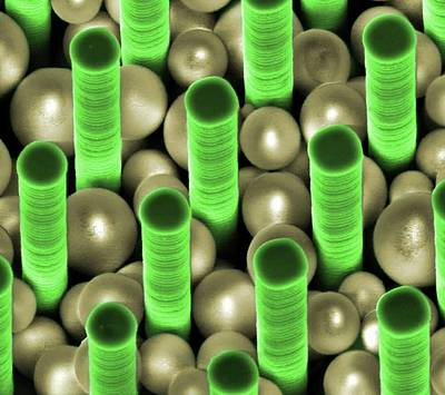 Nanoparticles Trapped In Pillar Array Print by Center For Nanophase Materials Sciences, Ornl