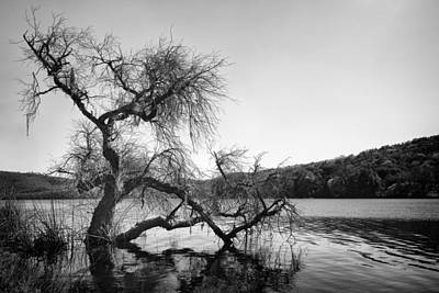 Napa Lake Print by Francesco Emanuele Carucci