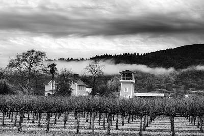 Napa Valley Vineyard Print by Mountain Dreams