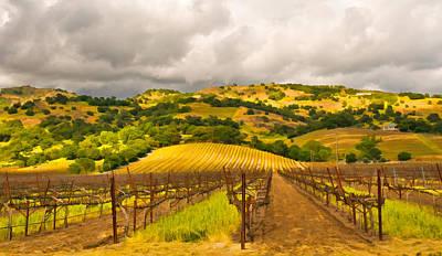 Napa Valley Digital Art - Napa Vineyard by Mick Burkey