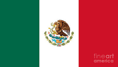 National Flag Of Mexico Authentic Scale And Color Version Print by Bruce Stanfield