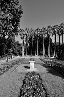 Sun Photograph - National Garden In Athens by George Atsametakis
