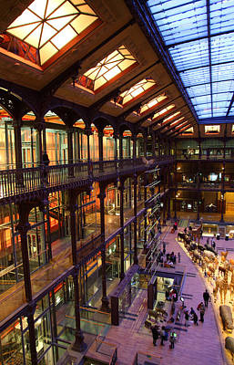 National Museum Of Natural History - Paris France - 011345 Print by DC Photographer