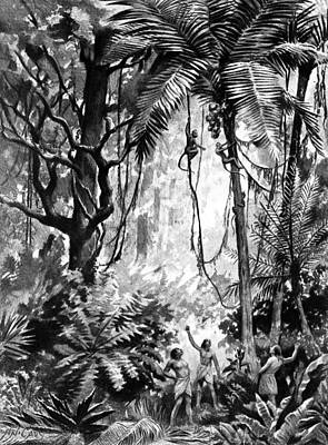 Rainforest Drawing - Native Brazilians, C1892 by Granger