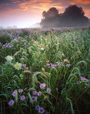 Native Prairie Sunrise Print by Ray Mathis