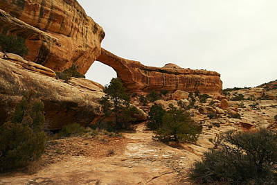 Natural Bridge Southern Utah Print by Jeff Swan