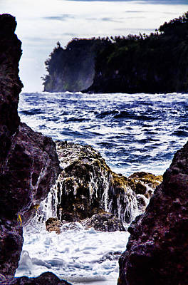Naturally Framed Kauai Coastline Print by Douglas Barnard