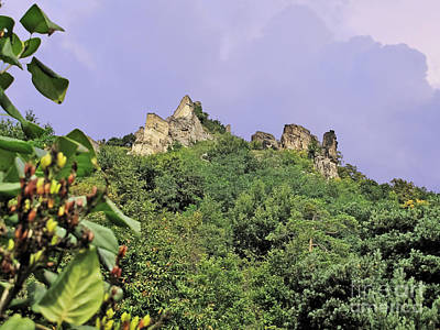 Durnstein Photograph - Nature And Medieval Ruins by Elvis Vaughn