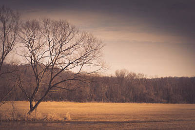 Virginia Photograph - Nature Beckons by Shane Holsclaw