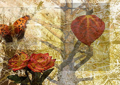 Photograph - Nature Collage by Cherie Haines