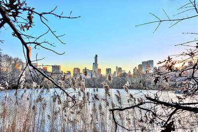 Central Park Photograph - Nature In Metropolis At The Lake At Central Park by Randy Aveille