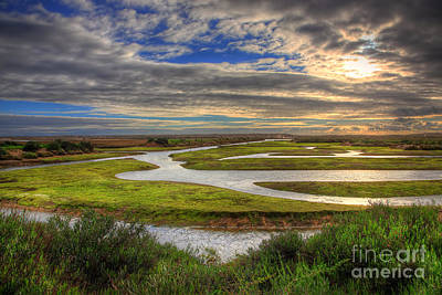Nigel Hamer Photograph - Nature Reserve by English Landscapes
