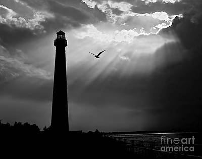 Nature Shines Brighter In Black And White Print by Mark Miller