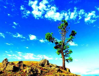 Nature Print by Viren Rana